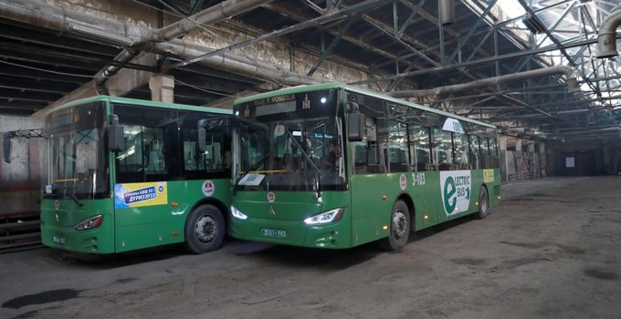 Mongold-uildwerlev-bus-01